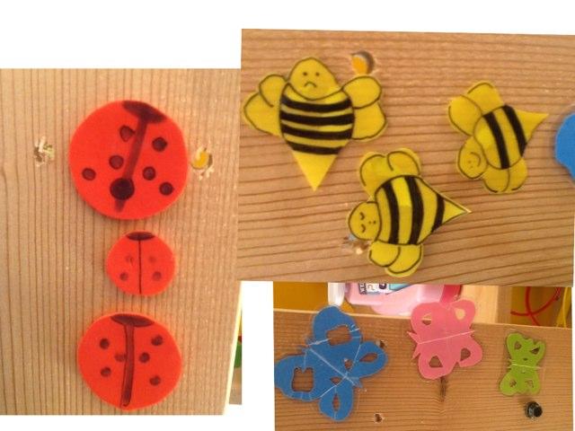 Butterflies, Bees, Ladybugs by Barbi Bujtas