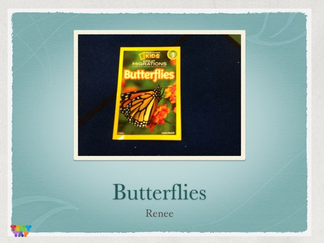 Butterflies By Renee by P302 SAS