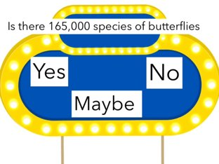 Butterflies JGB (1) by Courtney Durbin