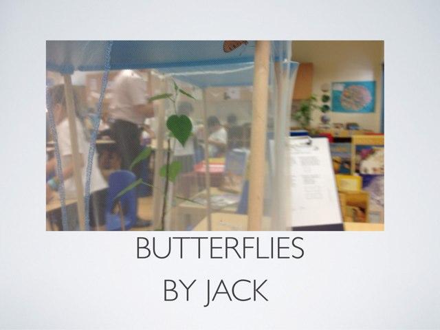 Butterflies Jack by P302 SAS