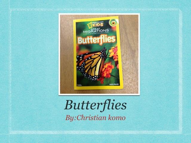 Butterflies  by P302 SAS