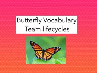 Butterfly Vocabulary by Melissa Durkin