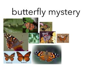 Butterfly mystery!Play it! its fun! by Room 207