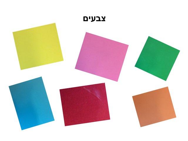 התאמה וזיהוי צבעים by Chen Noyman