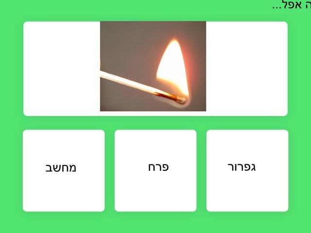 זיהוי מילים ללא בעומר by Yael Halevi Abel