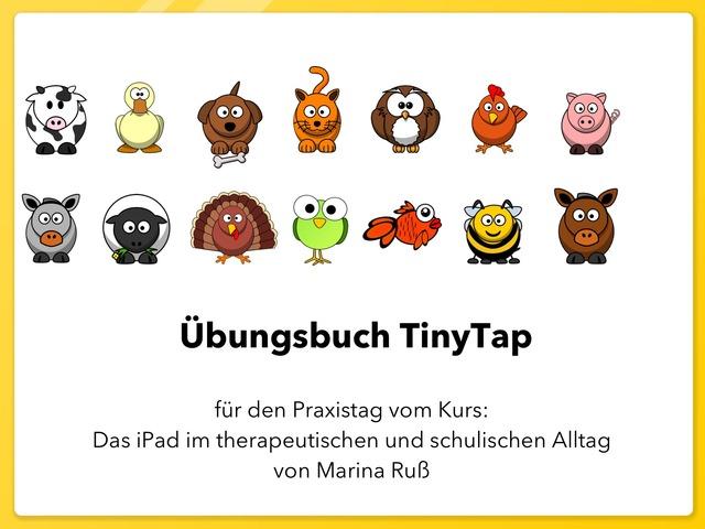 Übungsbuch TinyTap  by Marina Ruß