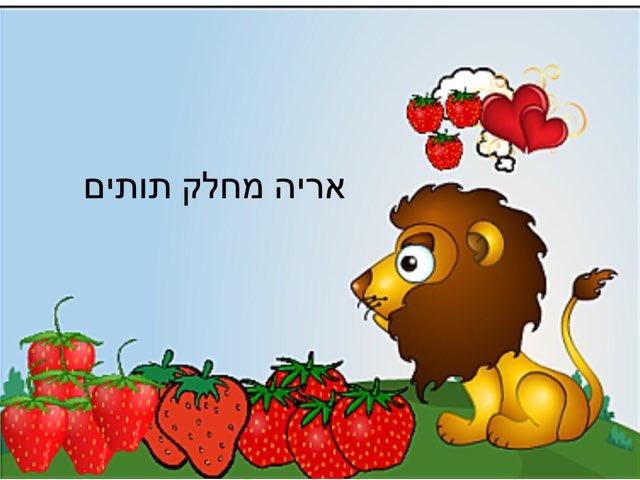 אריה מחלק תותים by רים ברברה
