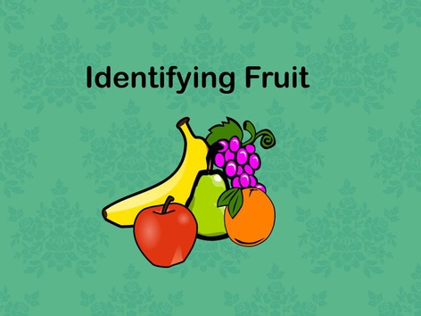 Fruit by Teresa Grimes