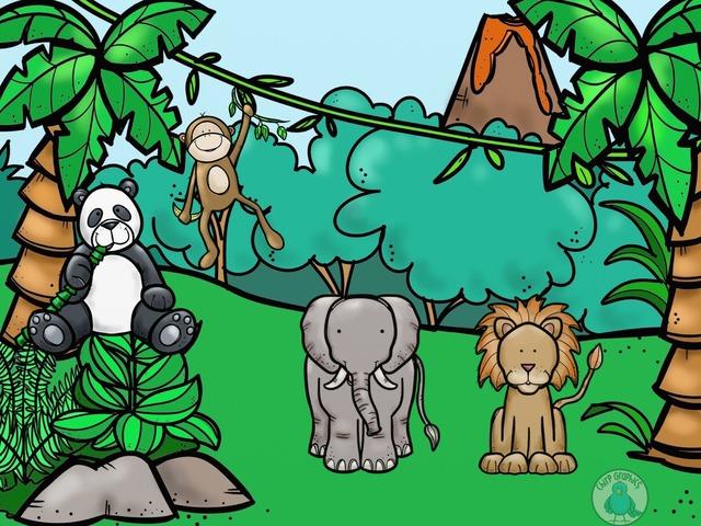 #animals by Thais Bonfim