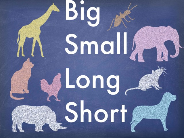 Big Small Long Short by Kathie Ginman