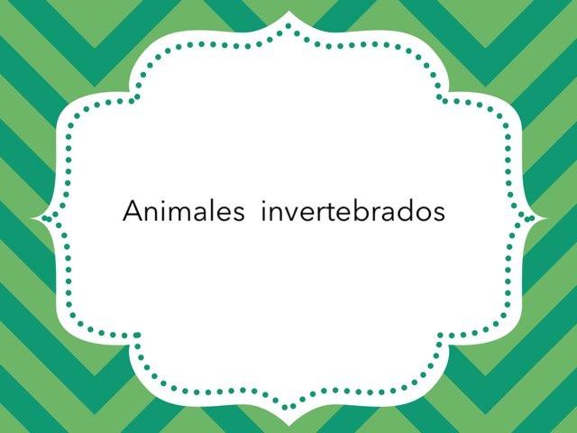 ANIMALES INVERTEBRADOS by LAURA PARDO