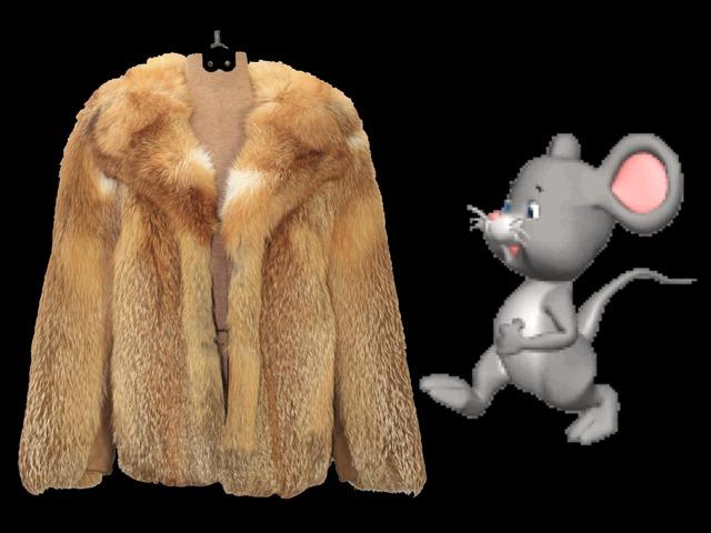 המעיל החום של הדוד נחום by עדי סלמנדר