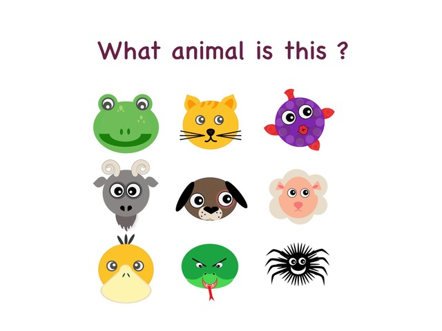 Animals -What animal is this ? (slow) by Teeny Tiny TEFL