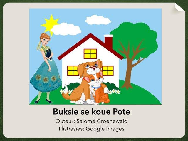 Buksie se koue pote by Salome Groenewald