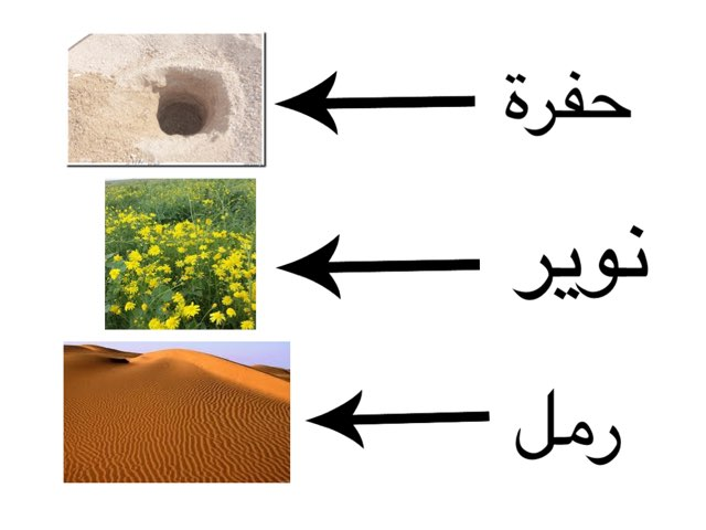 التصور البصري(البر) by Tahani Alshehri