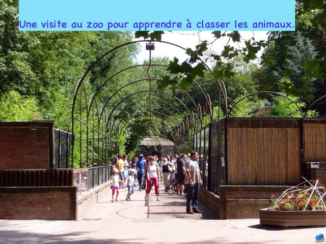 Ma Visite Au Zoo by Alice Turpin