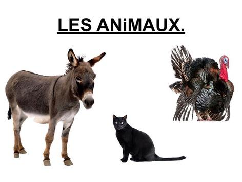 Les Animaux Désignation 3. by Valerie Escalpade