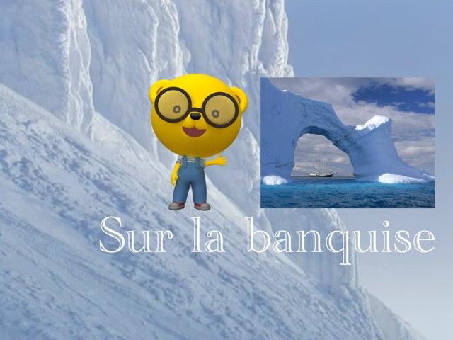 Sur La Banquise  by Ni Digicrea