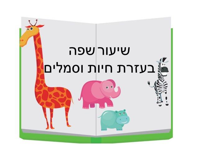 שיעור שפה בעזרת חיות וסמלים by yaron almasi