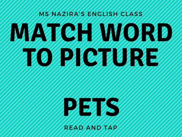 Match- Pets by Nazira Roslee