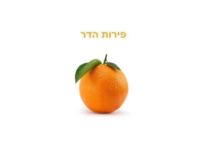 הכנת מיץ תפוזים by שרון נעמה כהן