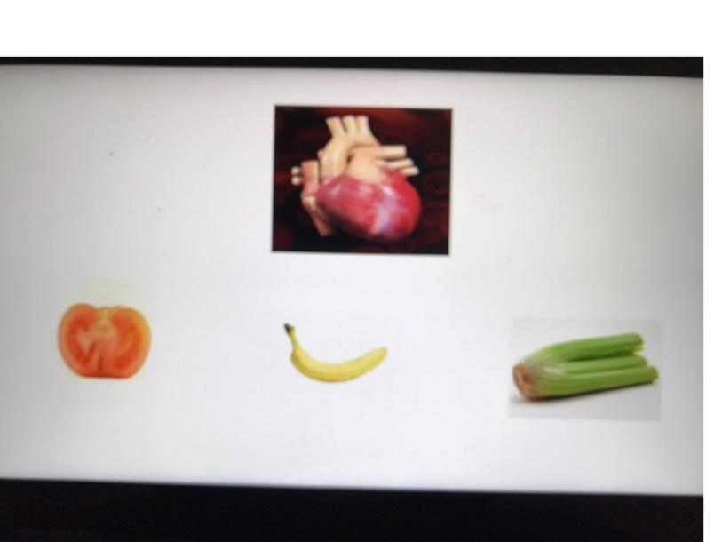 משחק בנושא מזון חיוני לאברים by Miriam Nisim