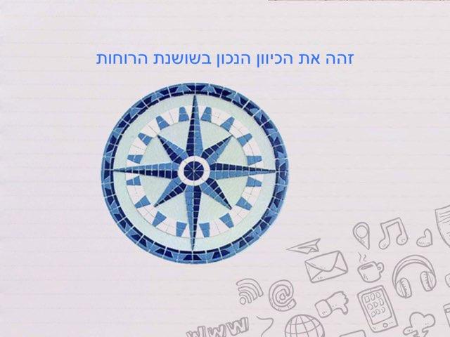 ארץ ישראל כיוונים וגבולות by Natali Geller