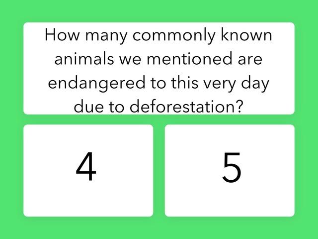 Deforestation  by Amanda Olson