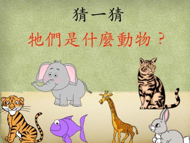 猜動物 by Hui Ling Zhao