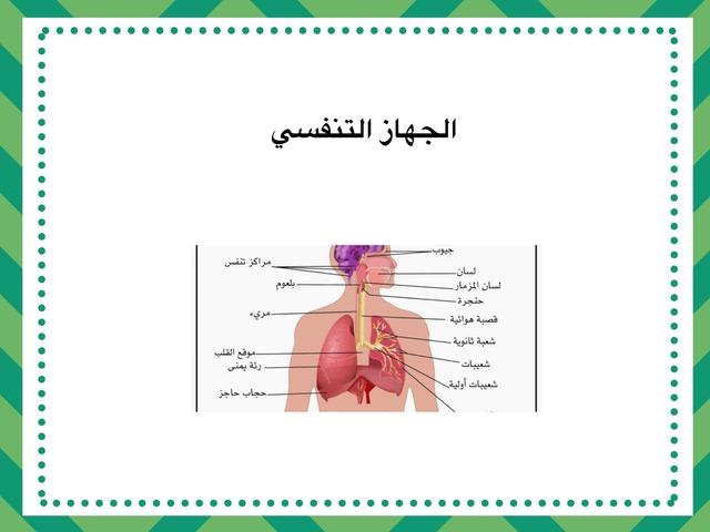جهاز التنفس by نورة أحمد