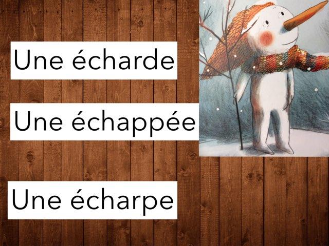 Le Bonhomme et l'oiseau #devinincos by Ecole Puimichel