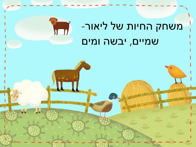 משחק החיות של ליאור by Shani Schwarzblat