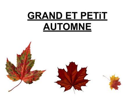 Grand Et Petit Automne by Valerie Escalpade