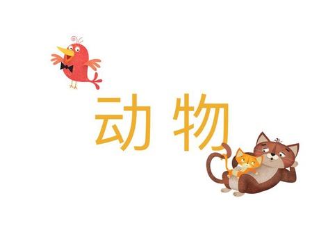 YCT 2 动物 by Xl