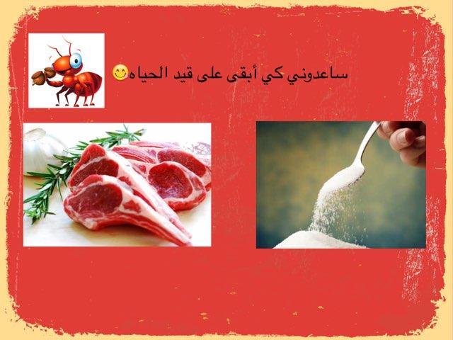 ماتحتاج له النمل  by مريم الشمري