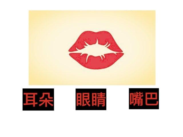 五官认字 by yan hong