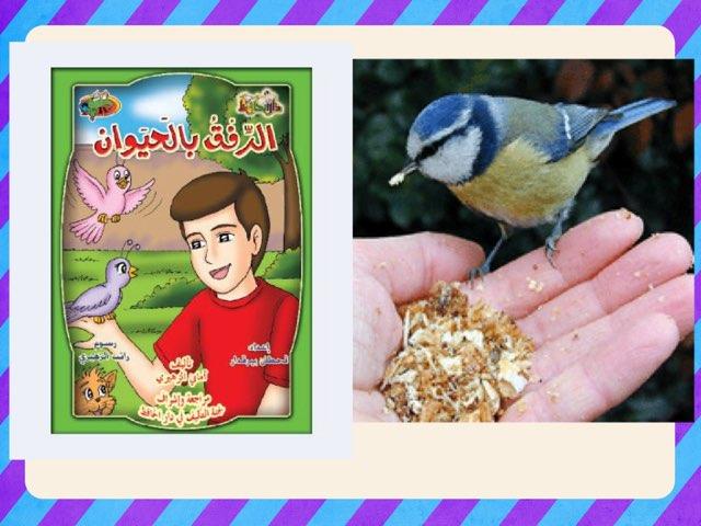 رحمة الطيور  by عبدالعزيز الحناوي