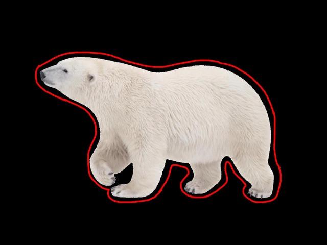 Polar Bear, Polar Bear by S Fleming