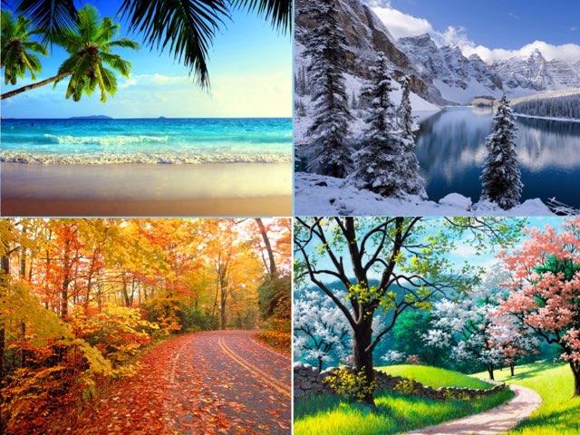 Seasons Of The Year by Sandra Wilson