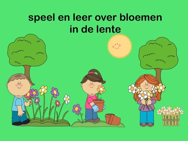 Speel en leer over bloemen in de lente by Lonneke de Wit