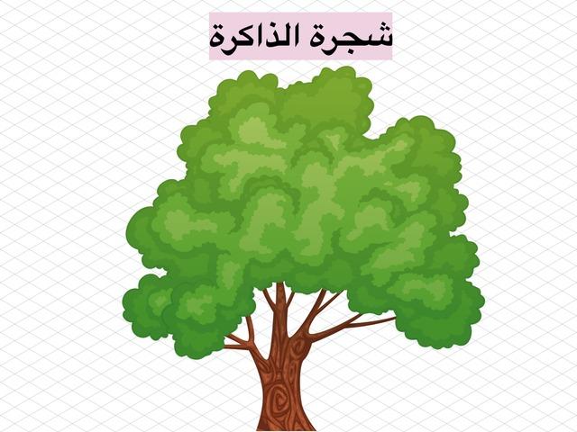 رسم الهمزة المتوسطة على ياء والمفردة على السطر by شوق الهذلي