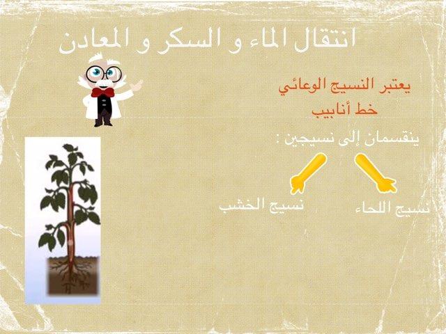 ثامن انتقال الماء by Reem Alazmi