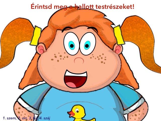 Testrészek by Evelin Pölös