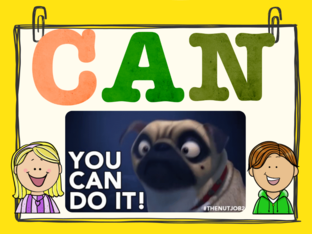 CAN OR CAN'T by Eliana Briggitte