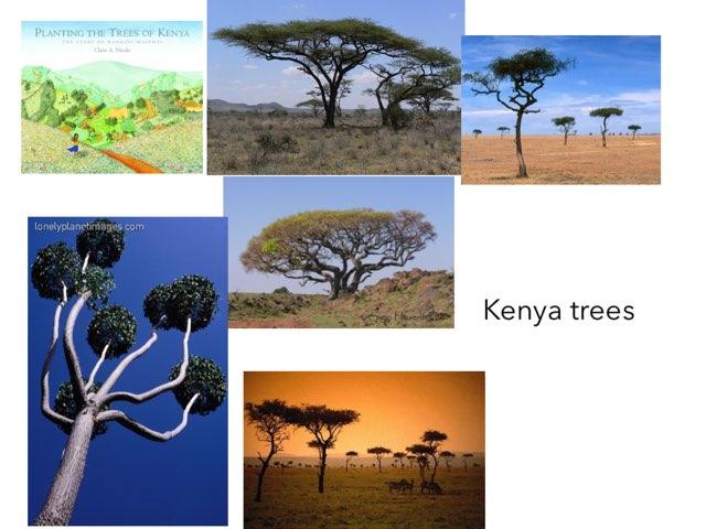 Kenya - Ben by FarBrook School