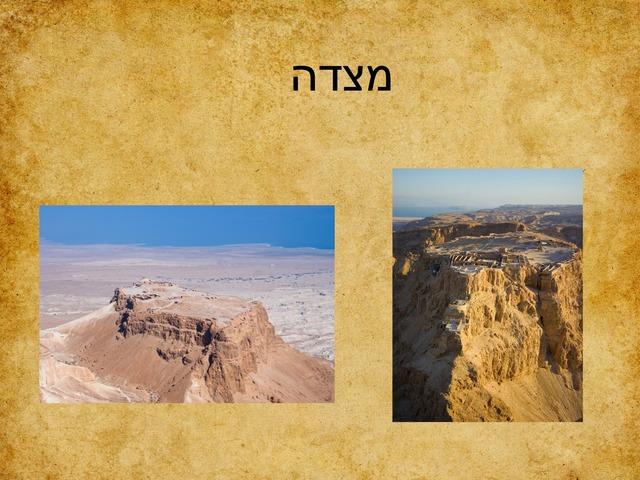 מצדה ליאת by מיתל ירושלים