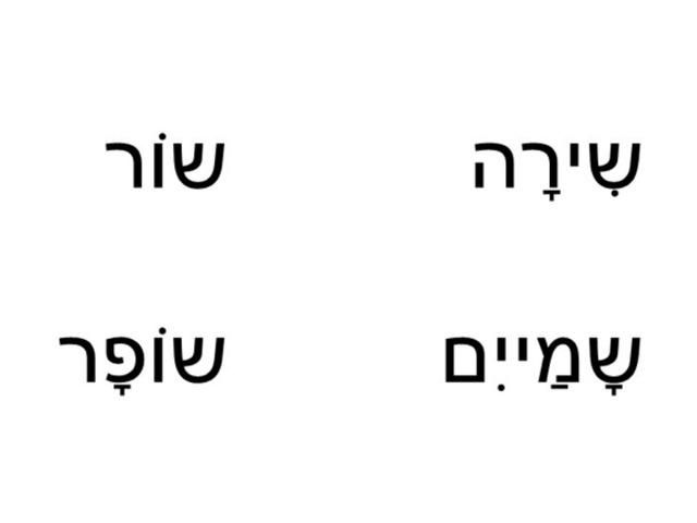 דויד 3 by שושי בינימין