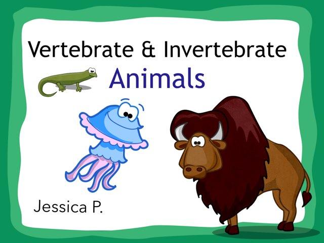 Vertebrate Animals by Jessica Preisig