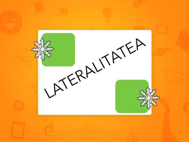 Lateralitatea by Ane Montes