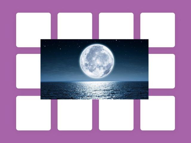 Луна by Polina Martynova